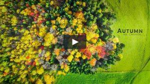 Autumn-Daniel Aucoin