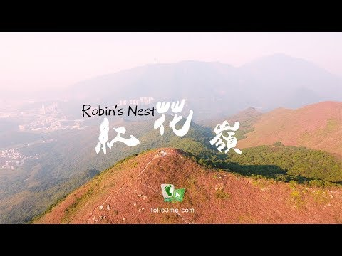 Robin's Nest Hong Kong