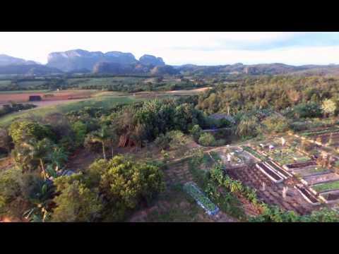 Finca Agroecologica El Paraiso Viñales Cuba