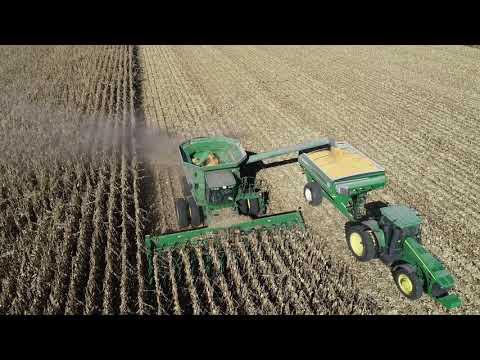 Harvesting Corn Nebraska