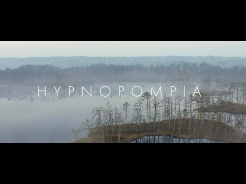 Hypnopompic forest