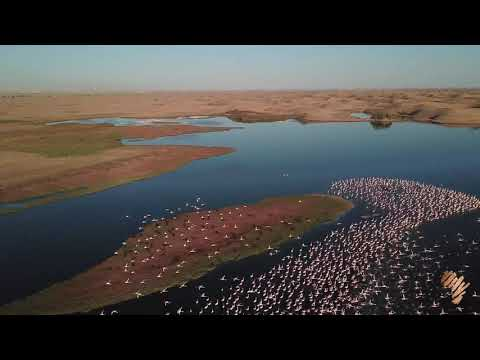 Wonderful drone shots from Namibia