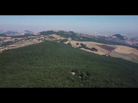 Bosco Macchione col drone